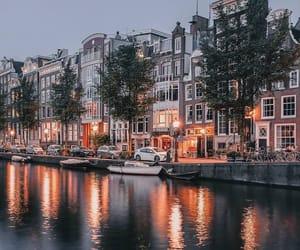 amazing, city lights, and holiday image