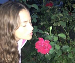 alternative, mood, and rose image