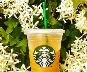 coffee, flowers, and iced coffee image
