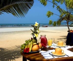 summer, beach, and brazil image