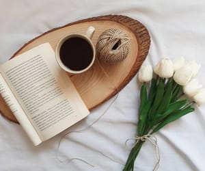 book, white, and coffee image