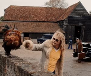 Chicken, Queen, and roger taylor image