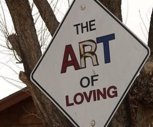 art, love, and frases image