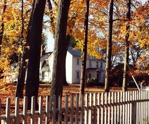 fall, autumn, and farm image