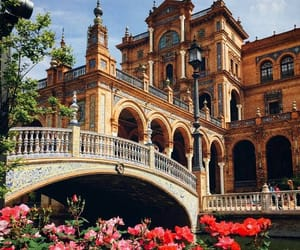 travel, spain, and flowers image