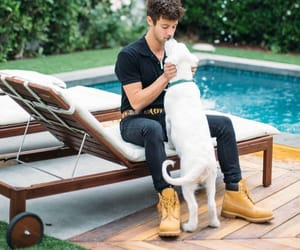 boys, dog, and model image