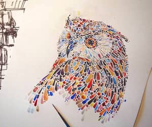 art, owl, and color image