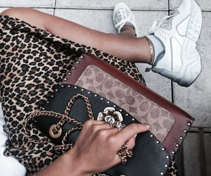 accessories, coach, and fashion image