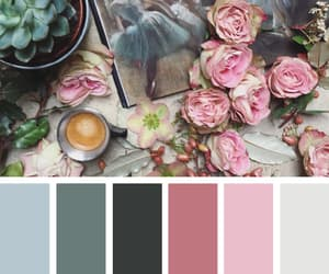 aesthetic, coffee, and color image