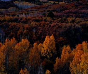 autumn, landscape photography, and Dallas image