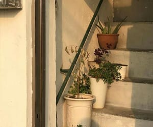 aesthetic, stairs, and golden hours image