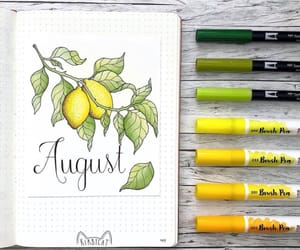 August, bullet, and creative image