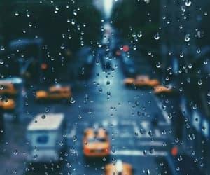 autumn, street, and window image