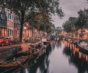 city, lights, and evening image