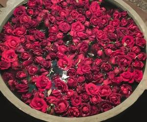 bath, pink, and rose image
