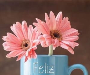cup, flor, and taza image