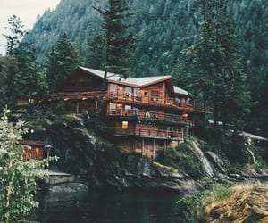beautiful, forest, and house image