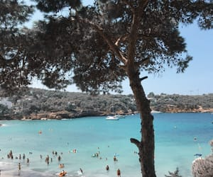 blue, ibiza, and vacation image