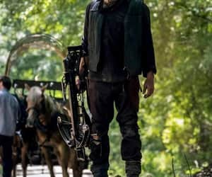 norman reedus, series, and daryl dixon image