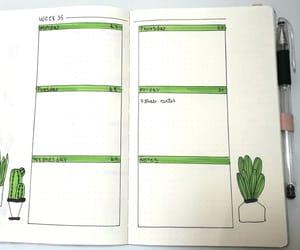 cactus, bulletjournal, and bujoinspire image
