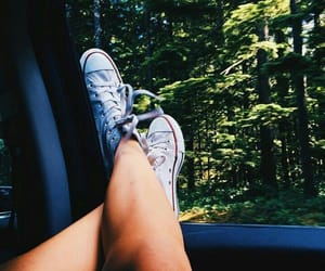 car, forests, and legs image
