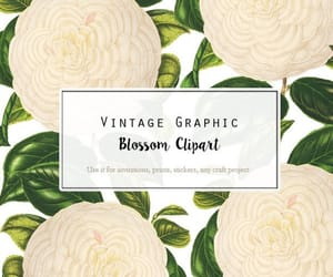 botanical, camellia, and watercolor flower image