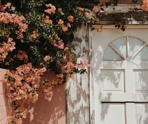 door, flowers, and green image