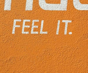 orange, words, and wall image