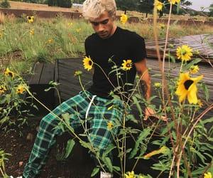 boys, sunflowers, and tucker image