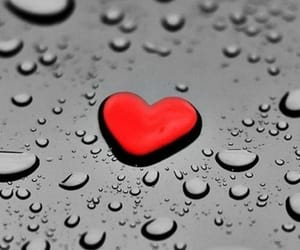 heart, raindrops, and red image