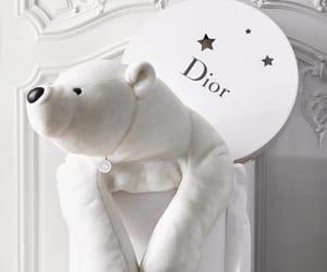 bear, cuddle, and dior image