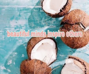 blue, coconuts, and lovely image