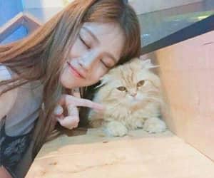 animal, girl, and korean image