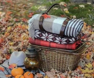 autumn and picnic image