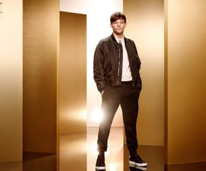 celebrity, louis, and music image