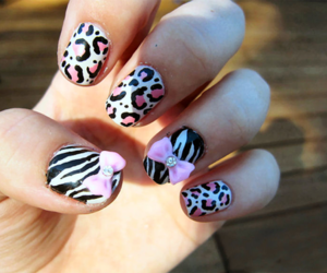 black and pink, bows, and leopard image