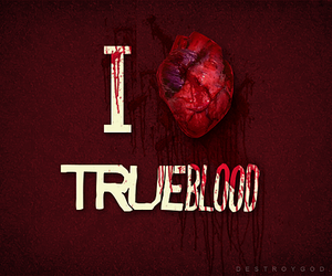 true blood, blood, and heart image