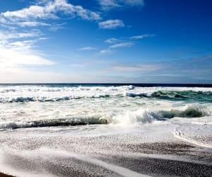 aesthetic, amapolas, and beach image