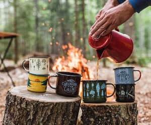 coffie, invierno, and bosque image
