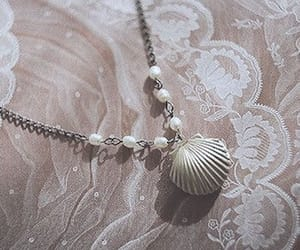 shell, lace, and aesthetic image