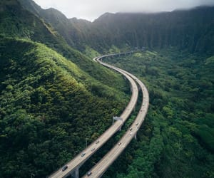 forest, hawaii, and mountains image