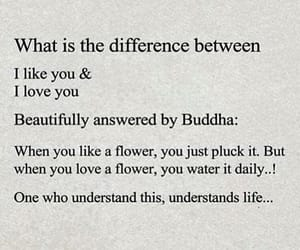 Buddha, difference, and deep quote image