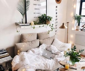 home, decoration, and plants image