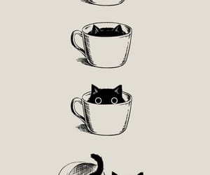 cat, black, and coffee image