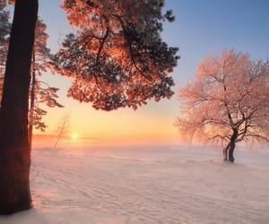 siberia, sunset, and snow image