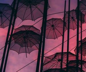 umbrella, wallpaper, and background image