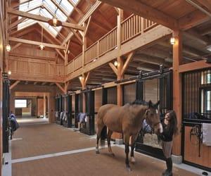 barn, stable, and animal image