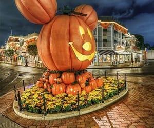 Amusement Parks, pumpkins, and autumn image