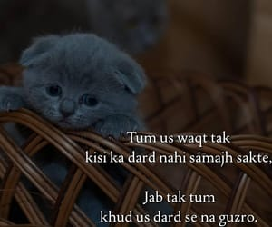 734 images about shayri on We Heart It | See more about urdu