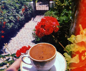 coffee, flower, and lovely image